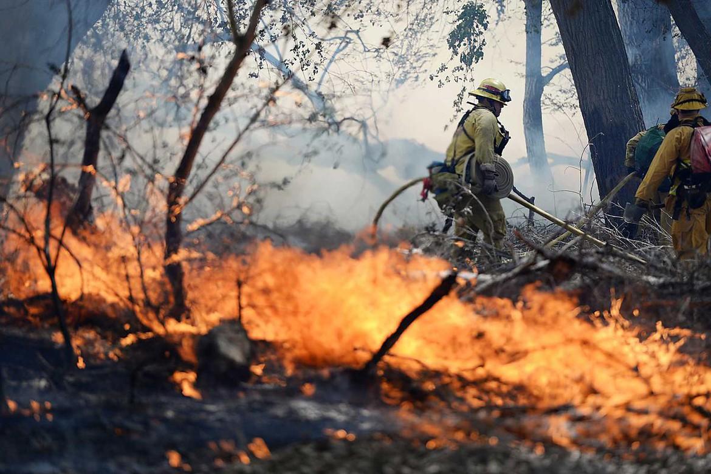 вода тушение лесного пожара картинки дачный сезон через